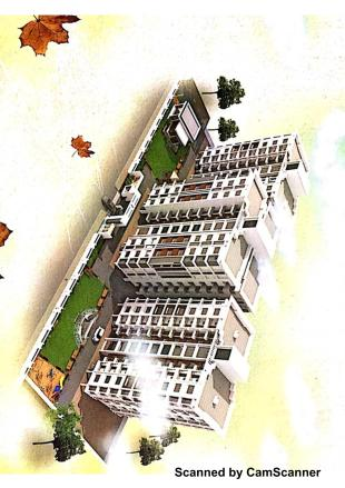 Elevation of real estate project Maple Leaf Heights located at Bhayli, Vadodara, Gujarat